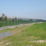 Wire Fencing